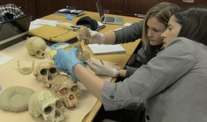 2.Heather Garvin and Jill Scott studying Homo naledi skull material at the Evolutionary Studies Institute at the University of the Witwatersrand in Johannesburg, South Africa. Photo by John Hawks/University of Wisconsin-Madison