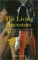 A Phenomenological Account of Yanomami Shamanism