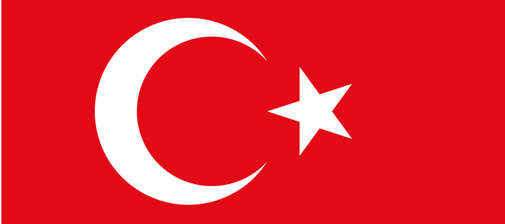 Turkey Votes