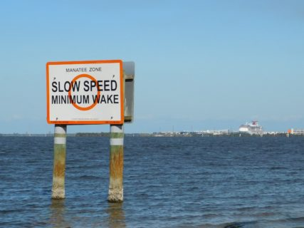"""A ign that says """"Slow Speed Minimum Waker"""" rises up over the surface of a body of water."""