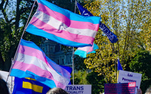 Two Transgender Rights flags fly above a crowd of demonstrators