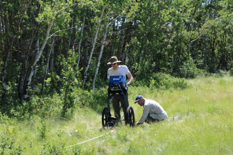 Author using sensing equipment on the forested edge of a meadow.