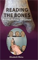 Of environment and genes: How to address bones' morphological variability