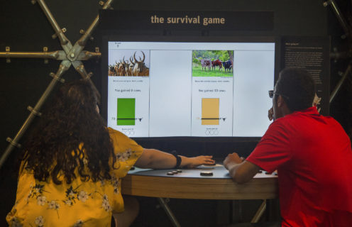 Two young people sit before a large screen, playing the survival game.