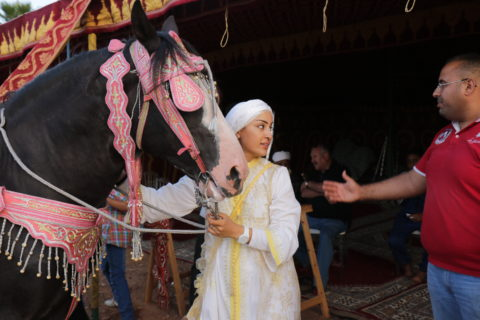 Amal holds her horse's reins. Both she and the horse are dressed for the comeptition. Amal's husband reaches his arm out, gesturing as he speaks.