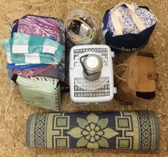 The contents of the bag are laid out on a carpeted floor. The items in the image are described below.