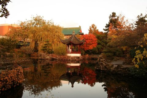 A photo of a view out over a pond. A pagoda is at the other side of the pond surrounded by trees with orange, yellow, and green leaves.