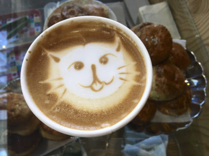 An image of a latte viewed from above, a cat face is drawn in the foam.