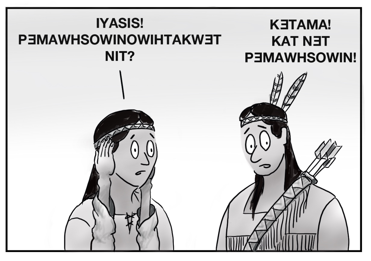 """This image depicts the two native individuals from the front, their eyes wide and looking concerned, the person on the left with their hands up against the sides of their face. The person on the left says """"IYASIS! PƎMAWHSOWINOWIHTAKWƎT NIT?"""" and the other says """"KƎTAMA! KAT NƎT PƎMAWHSOWIN!"""""""