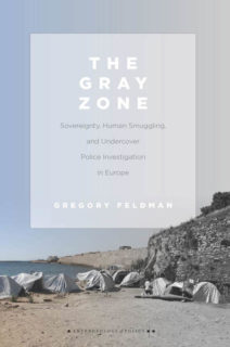 Cover of the book The Gray Zone.
