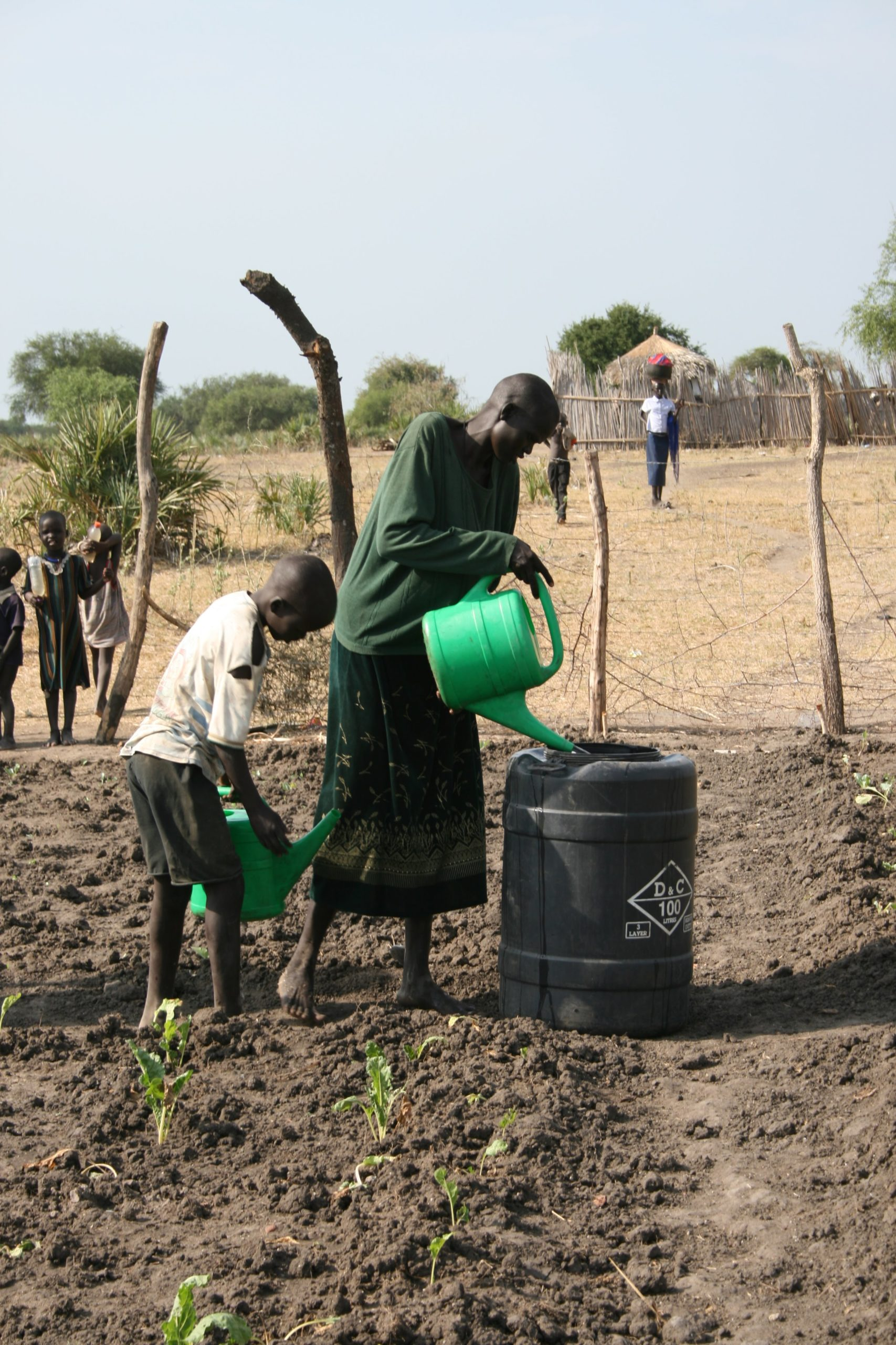A woman and a boy use green plastic watering cans to water shoots in one of the project's gardens.