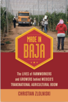 Thirst and hardship in Baja California: The lives of those who produce the vegetables we eat