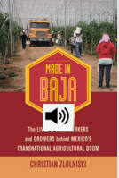 Thirst and hardship in Baja California: The lives of those who produce the vegetables we eat (with Audio)