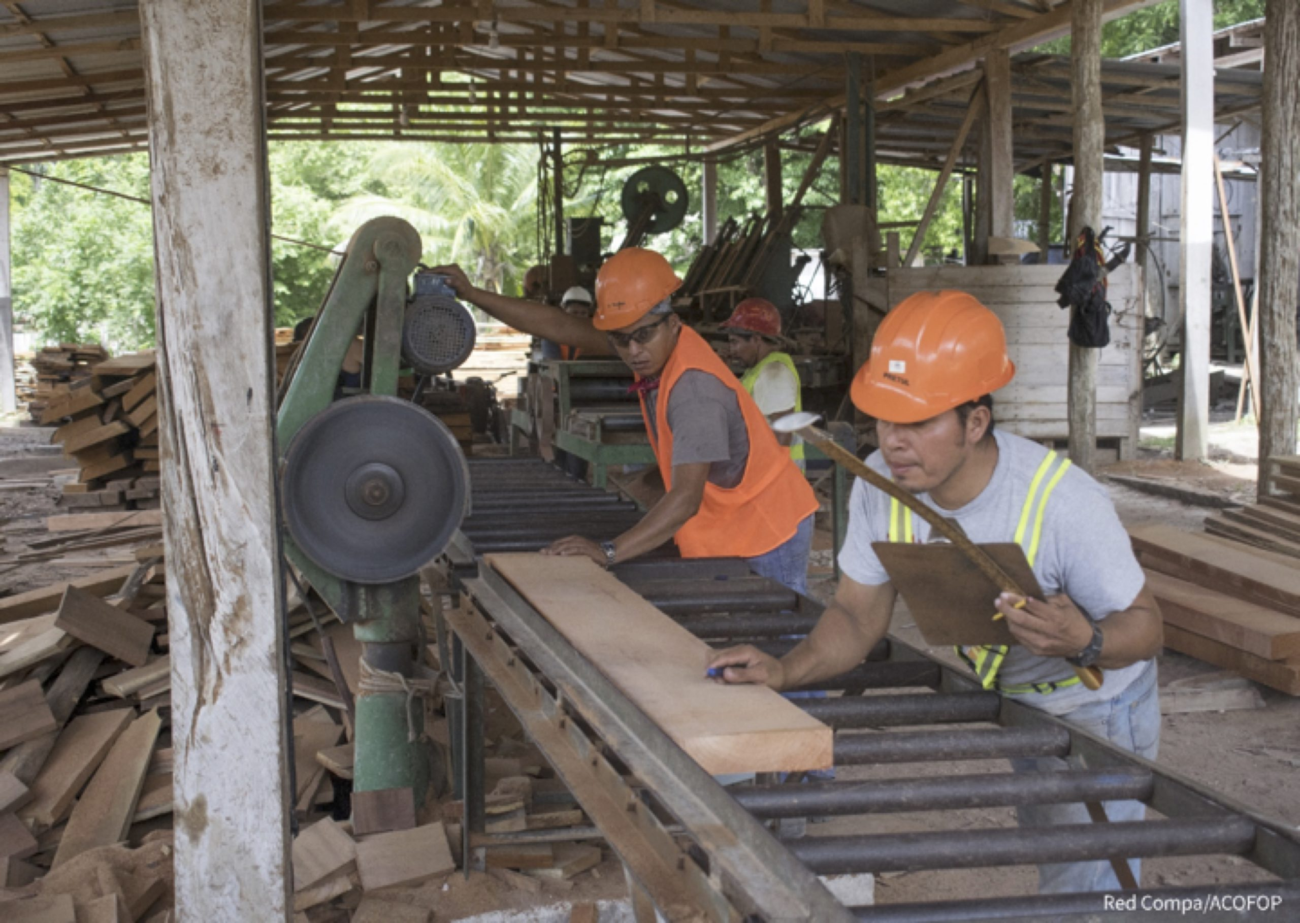 A photograph of two men at work