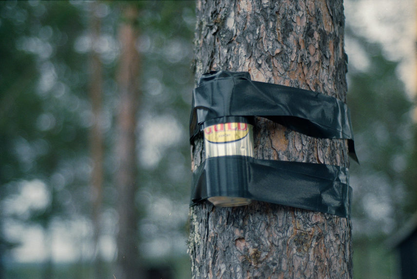 Photograph of a can taped to a tree.