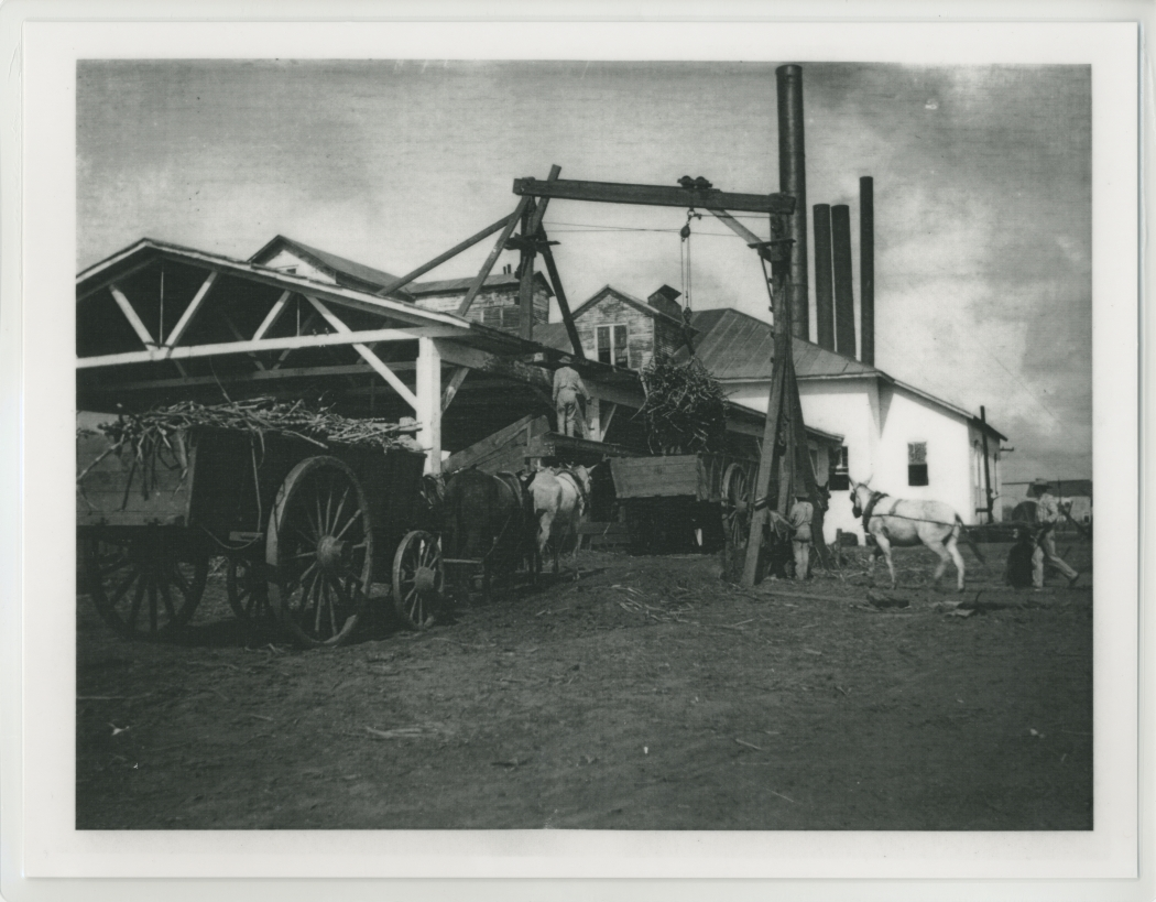 Black and white photograph of people unloading a wagon