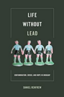 From Lead through activism to activism through lead
