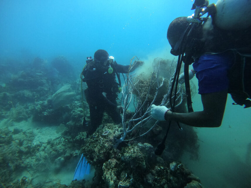Photograph of two divers trying to disentangle net from a sea coral structure.